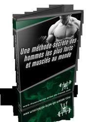 calcul de la masse musculaire